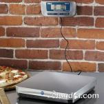 Edlund - ERS-150 - 150 lb x .05 lb Digital Receiving Scale image