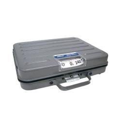 Pelouze - P250S - 250 lb x 1 lb Mechanical Receiving Scale image