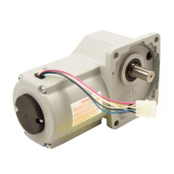 Lincoln - LIN370368 - 115 V Conveyor Motor image