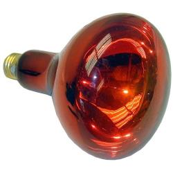 Commercial - 250 Watt Red Warmer Bulb image