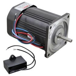 Hoshizaki - 2U0106-01 - Ice Machine Water Pump Motor image