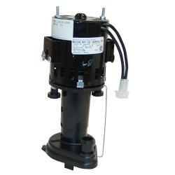 Scotsman - 12-2586-24 - Pump/Motor Assembly - 115 Volt image