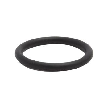 16943 - Fisher - 1600-5000 - O-Ring Product Image