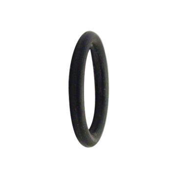 16983 - Fisher - 60005002 - Drain O-Ring Product Image