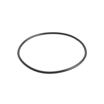 321890 - Everpure - 151120 - Replacement O-Ring Product Image