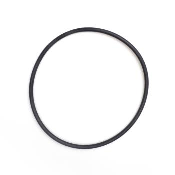 13519 - Everpure - EV307119 - Filter O-Ring Product Image