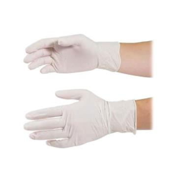 81692 - Primesource - 75005240 - Large Powder Free Latex Glove Product Image
