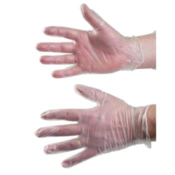 59044 - Primesource - 75006240 - Large Vinyl Powder Free Disposable Gloves Product Image