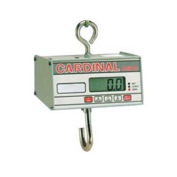 DETHSDC500 - Detecto - HSDC-500 - 500 lb x .2 lb Digital Hanging Scale Product Image
