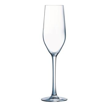 99081 - Cardinal - H2090 - 5 1/4 oz Mineral Champagne Glass Flute Product Image