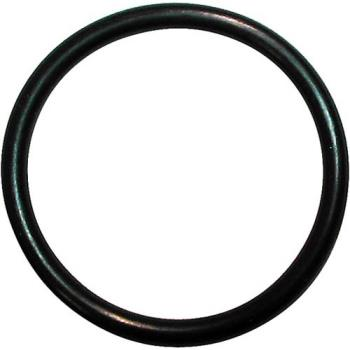 321815 - BKI - O0012 - O-Ring Product Image