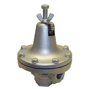 "561007 - Commercial - 3/4"" Steam Regulator Product Image"