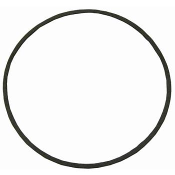 321598 - Stero - A5732287 - Gould Pump Gasket Product Image