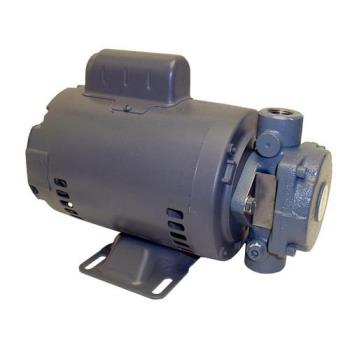 681119 - Axia - 11769K - Fryer Filter Pump & Motor Assembly Product Image
