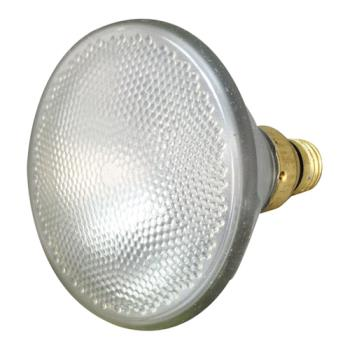 381601 - Allpoints Select - 381601 - 90w Tuff-Skin Lamp Product Image