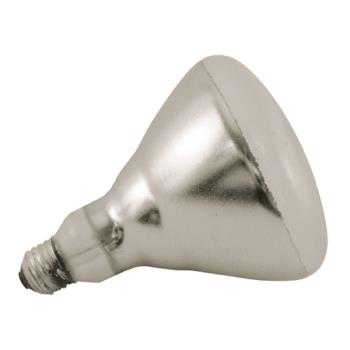 42213 - Norman Lamps - PFA-250R40/1 - 250 Watt Clear Shatterproof Light Bulb Product Image