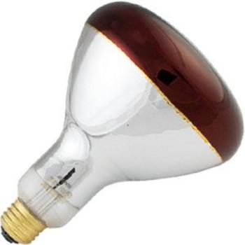 42212 - Norman Lamps - PFA-250R4010 - 250 Watt Red Shatterproof Heat Lamp Bulb Product Image