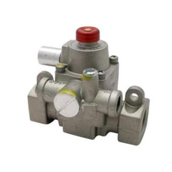 "41411 - Commercial - 1/2"" TS Safety Valve Product Image"