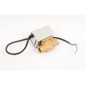 8008072 - Southbend - 3-S543-1 - Blowdown Solenoid Valve 220 V Product Image