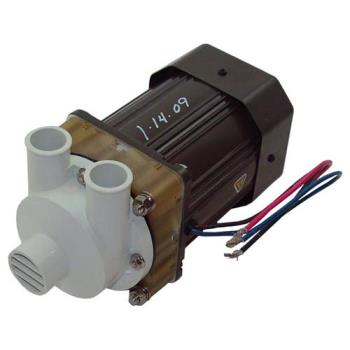 681303 - Hoshizaki - S-0731 - Pump & Motor Assembly Product Image