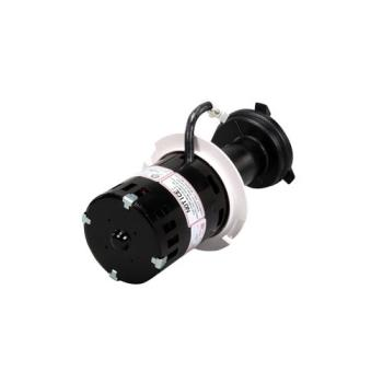 8006666 - Scotsman - 12-2920-22 - Water Pump Product Image