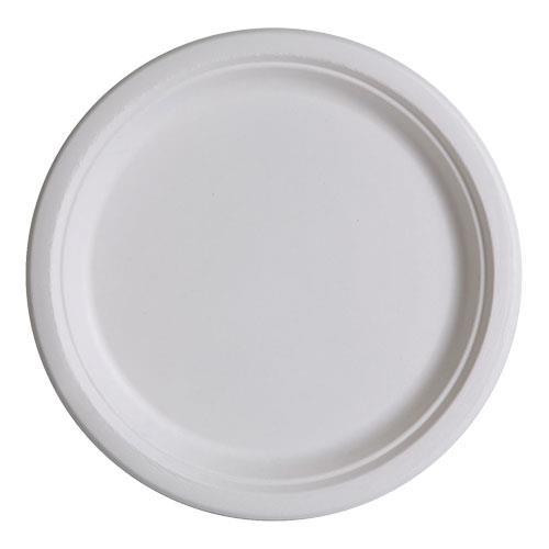 10 in Sugarcane Plate Convenience Pack