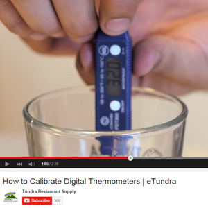 Buying Guide: Kitchen Thermometers [Video]